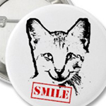 cat smiling from omniverz.com