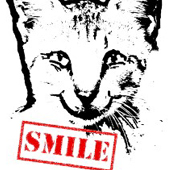 Smiling cat image sold at Omniverz.com